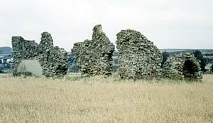 The remains of King John's Palace in [Kings] Clipstone, 2003.